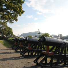 Canons facing the harbor and cruise ships